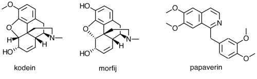 kodein-morfij-papaverin