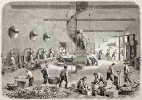 parfemska tvornica