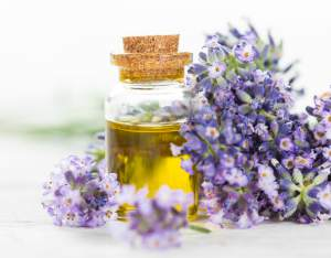 eterična ulja u biljnim uljima