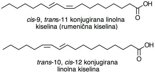 konjugirana linolna kiselina