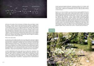 Priče iz šume Striborove 3
