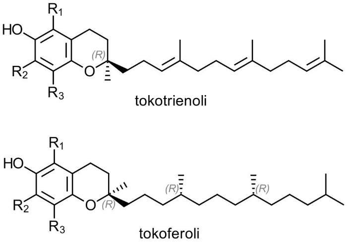 tokoferoli i tokotrienoli