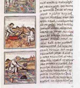 Sahagun codices